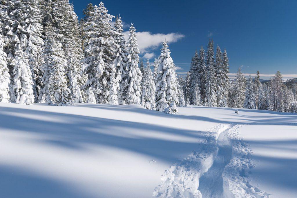 snowfall in northstar