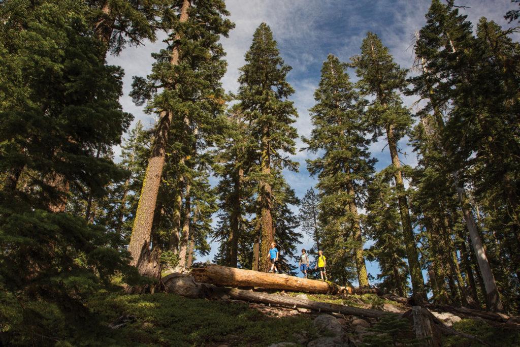 mountainside-hiking-tahoe-kids-family